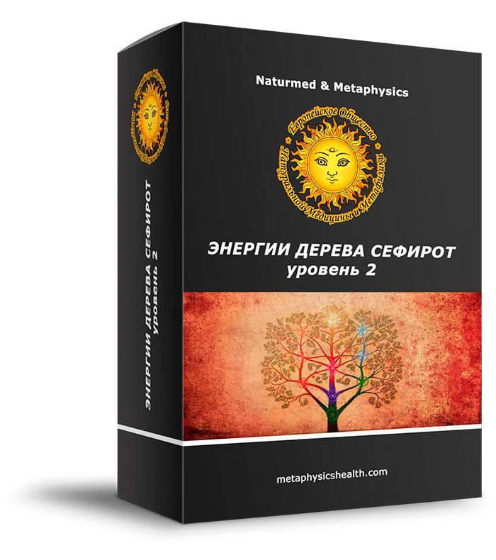 Курс Энергии Дерева Сефирот уровень 2